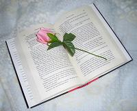 poemas para pedir perdon