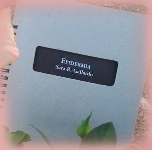 «Epidermia» de Sara Gallardo —Editorial El Gaviero—