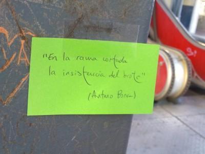 «Todo tanto», de Arturo Borra —Editorial Tigres de Papel—