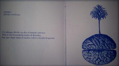 «El hombre pájaro vino a vernos», de Sora Sans —Editorial In Pectore—